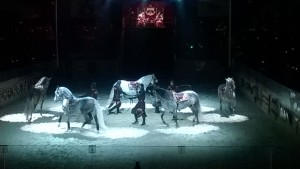 Master of Horse intermission, Medieval TImes Lyndhurst
