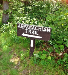 Appalachian Trail @ High Point State Park